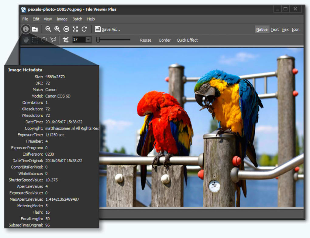 File Viewer Plus 4.0.1.8 Crack + Serial Key Free Download